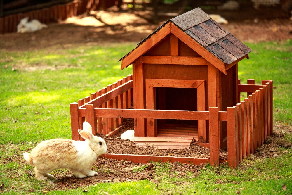 konijnenhok zelf maken
