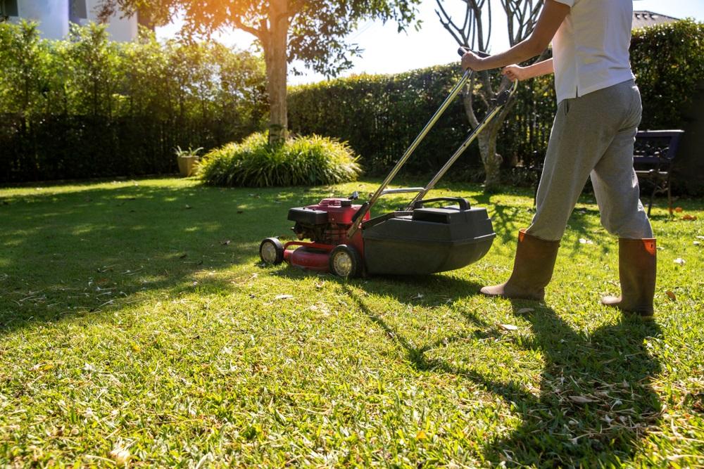 De Beste Grasmaaier Van 2020 Tijd Voor Je Tuin